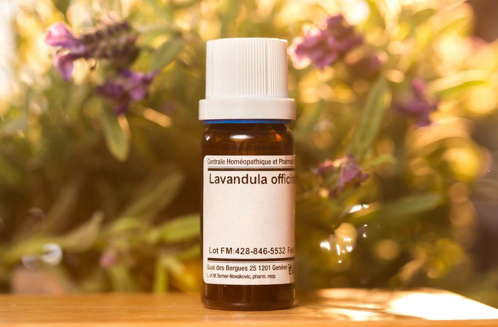 lavanda-pharmacie-fiole